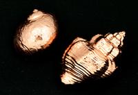 斎藤鍍金工場 メッキの種類